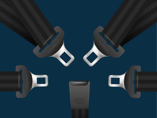 5 point seat belt
